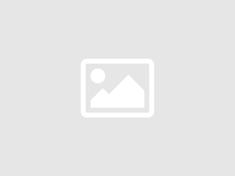 Exposition / Anuki, la bande dessinée des touts-petits