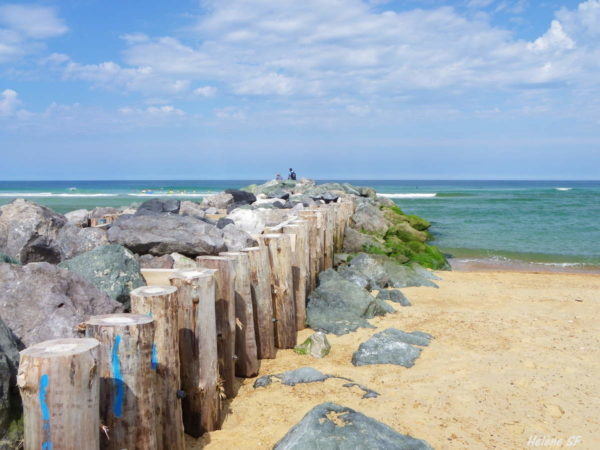 Balades pédestres à la découverte de Vieux-Boucau
